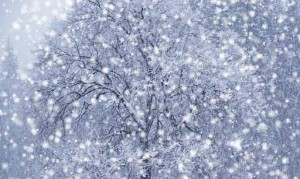 snowfall-wallpapers-8-3-s-307x512