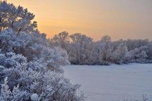 winter-landscape-13546168508HJ